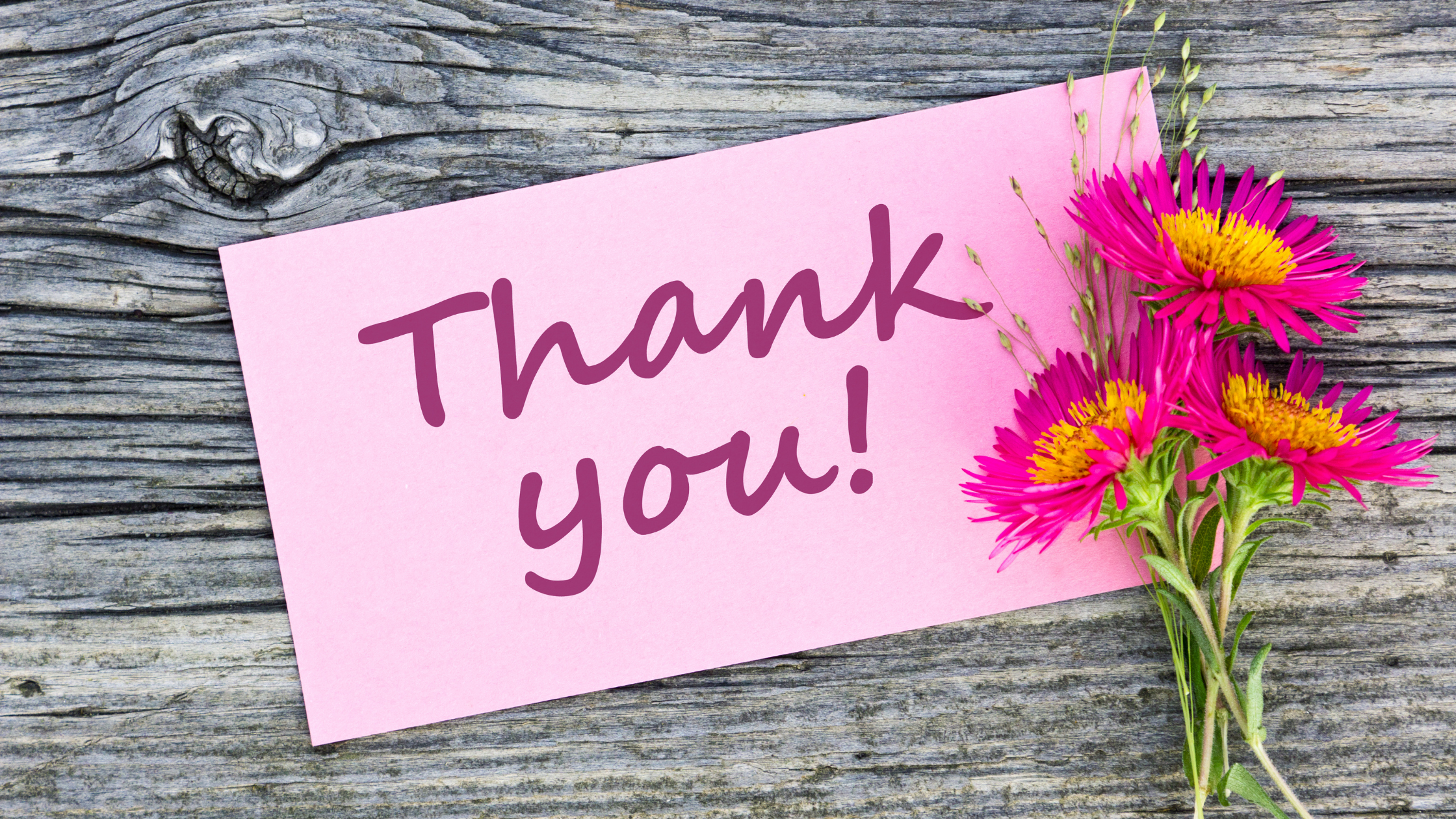 Thanking Your Donors